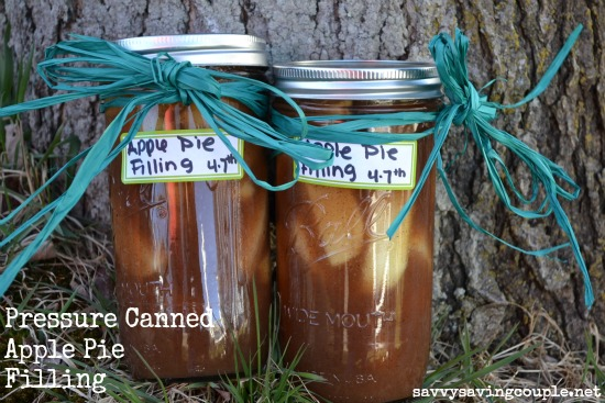 Pressure canned apple pie